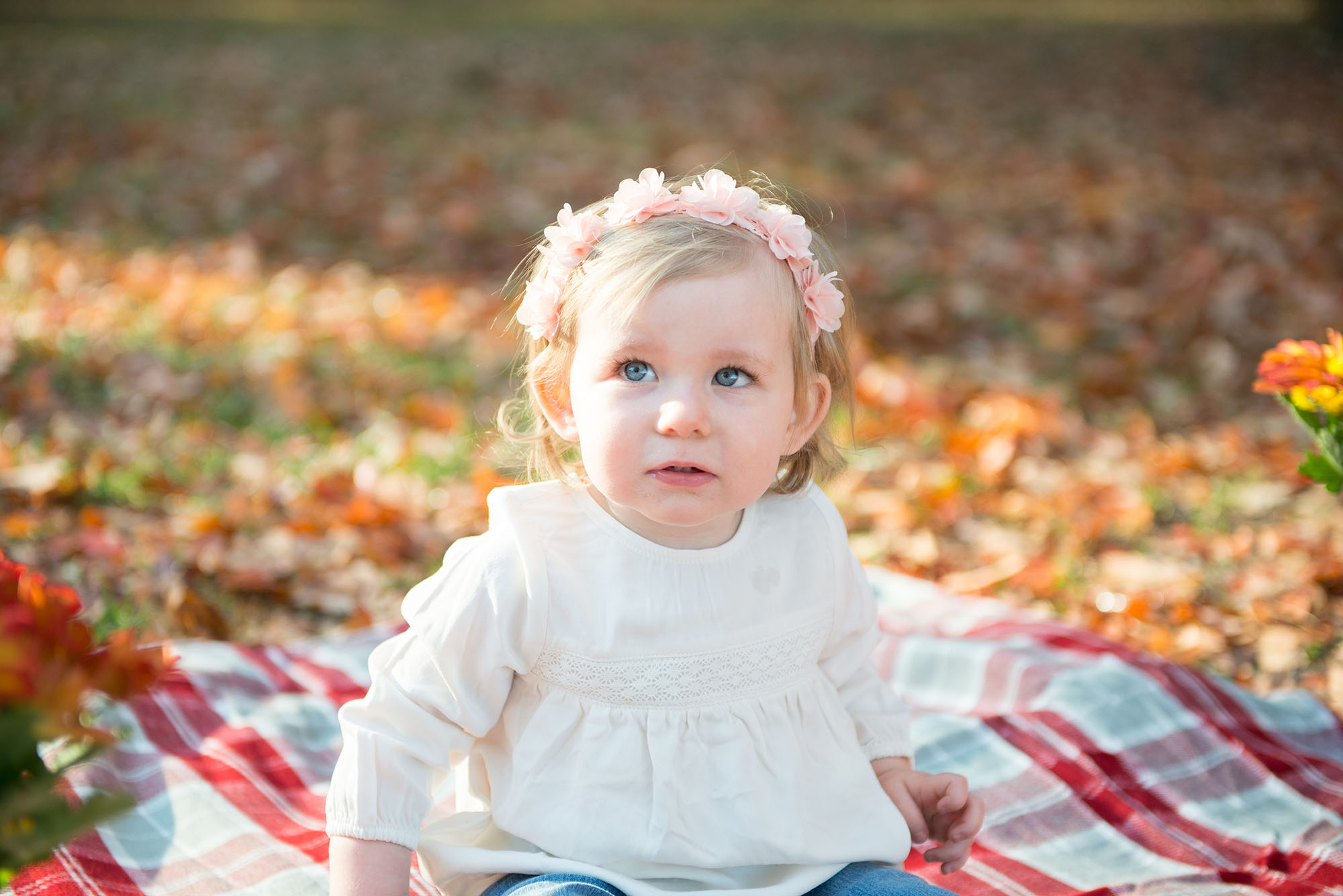 Fall Family Photography Session Maryville TN